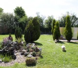 Dog Boarding garden Buckinghamshire
