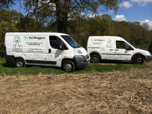 Our Vans are specially equipped to ensure your dogs comfort and security